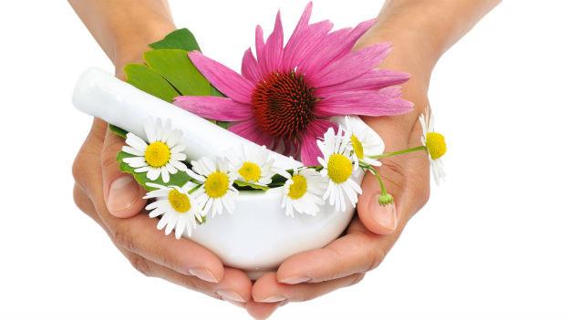 Phytotherapie ist eine der ältesten Heilmethoden überhaupt.