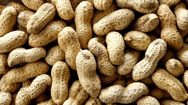 Ein ganzer Haufen Erdnüsse mit Schale.