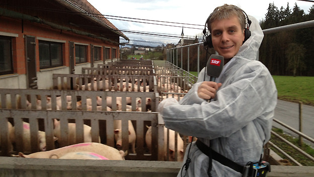 Reto Scherr berichtet live aus der Schweinemästerei.