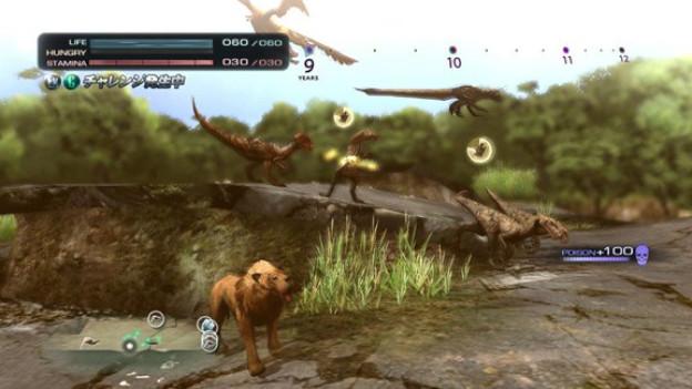 Um Löwen und Dinos macht ein lebensfroher Spitz besser einen Bogen.