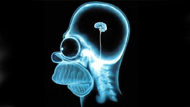 Homer Simpson wird nicht eben grosse geistige Fähigkeit zugeschrieben.