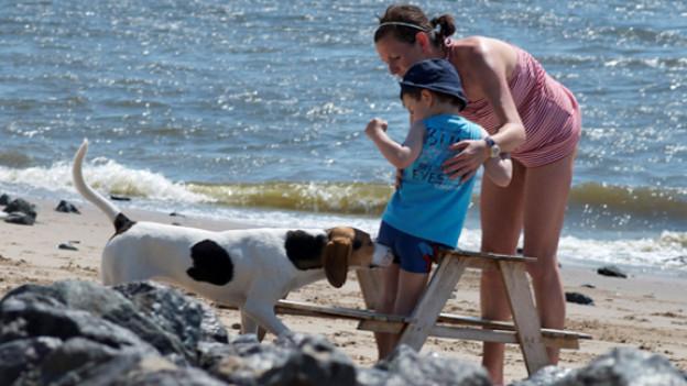 Hunde und Kinder – eine Kombination mit viel Konfliktpotential.