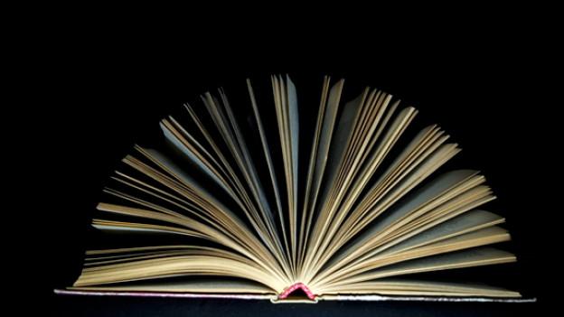 Speed Reading - oder die Frage: Wie schnell kann man ein Buch lesen?