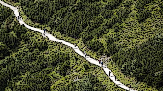Der Jakobsweg
