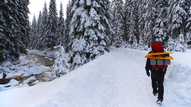 Wanderung durch eine verschneite Winterlandschaft.
