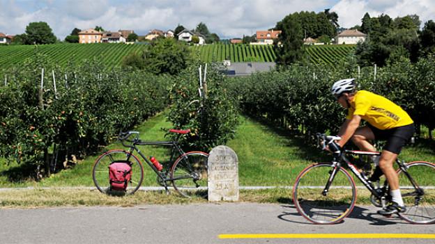 Auf halber Strecke zwischen Lausanne und Genf. Endlich sind auch andere Radler unterwegs.