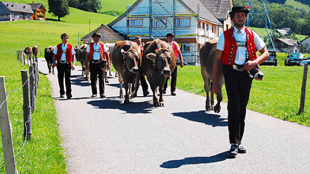 Traditioneller Alpabzug in Brülisau.