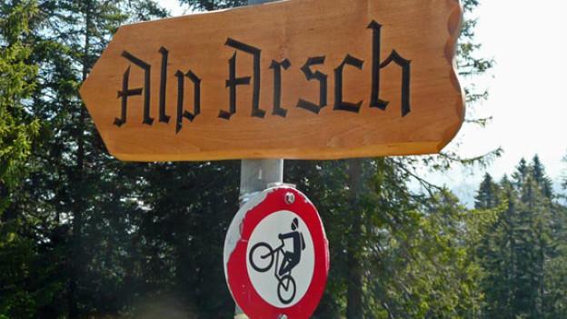 Die Alp mit dem unvorteilhaften Namen trohnt über dem Walensee.