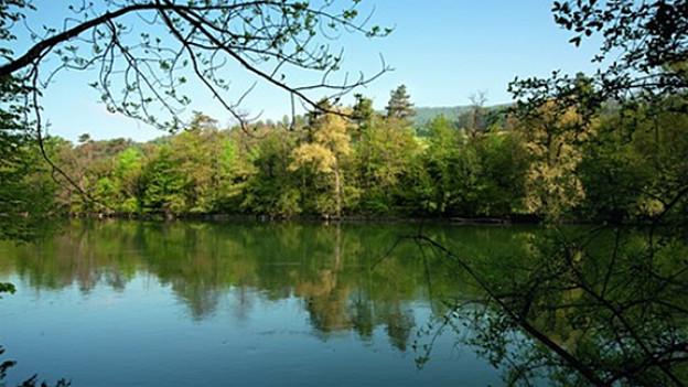 Auch der Jurapark Aargau wird vorgestellt.