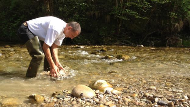 Handarbeit im Fluss: Kursleiter Toni Obertüfer beim Goldwaschen am Napf.