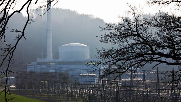 Blick auf das AKW Mühleberg.