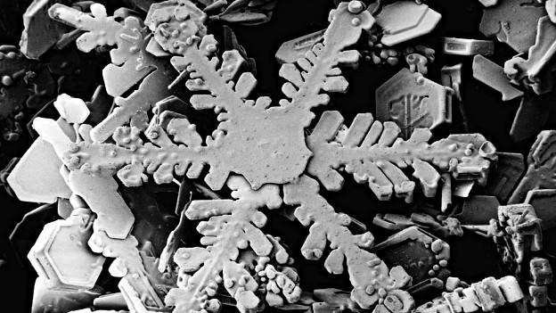 Schneeflocke unter dem Elektronenmikroskop.