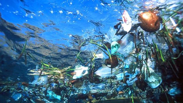 Immer mehr Abfall bedroht den Lebensraum Meer: Schwimmende Müllinsel im Pazifik.
