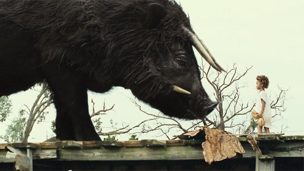 Der Auerochse als Symbol der Kräfte der Natur im Film «Beasts of the Southern Wild».