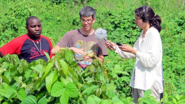 Wissenschaftsredaktorin Odette Frey begleitet Forscher in Kamerun.