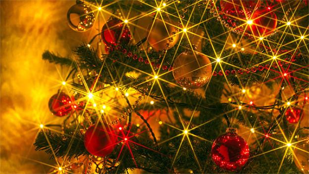 Ein geschmückter Weihnachtsbaum.