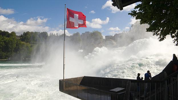 Blick auf den tosenden Rheinfall.