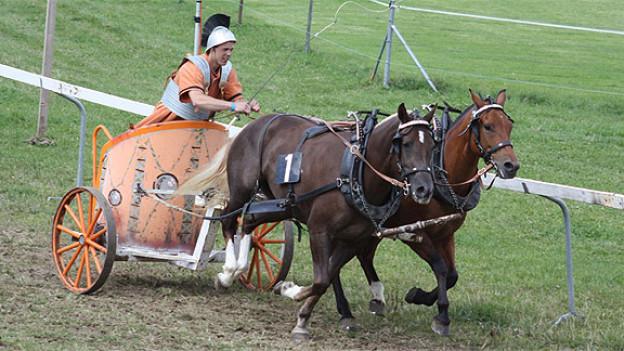 Wagenrennen am Marché-Concours in Saignelégier.