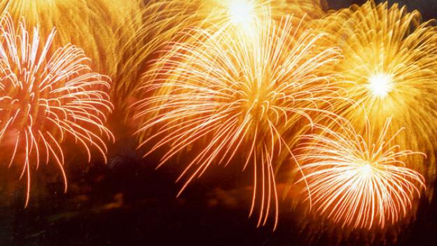 Zwei Tage vor Silvester präsentieren wir ein buntes Feuerwerk unvergesslicher Schlagermelodien.