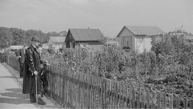 Deutsche Kleingärten 1952.