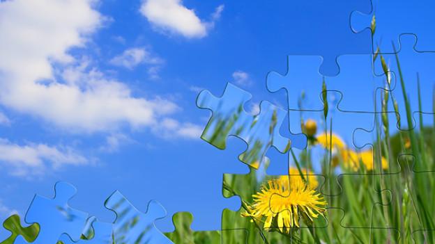 Mit jedem zusätzlichen Puzzleteil entsteht «naadisnaa» das Gesamtbild.