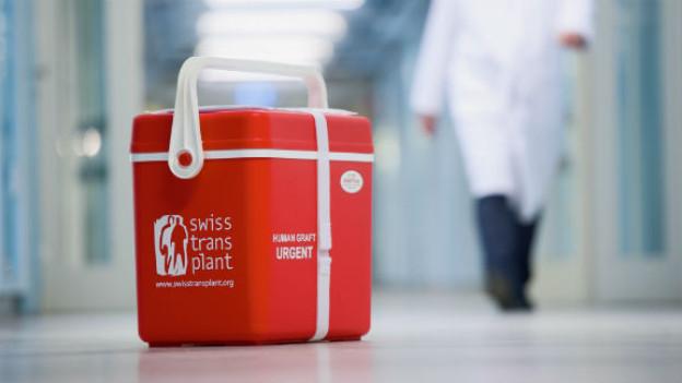 Die Kühlbox für den Transport von Spenderorganen.