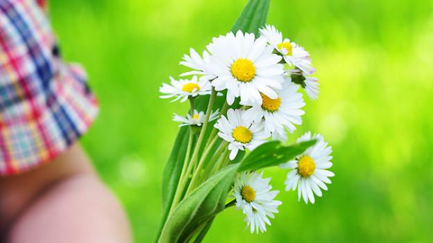 Blumen fürs Mami.