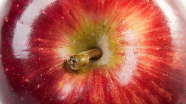The «Big Apple» ist eine wahrlich fruchtige Bezeichnung für eine Millionenstadt.