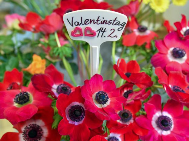 Der Valentinstag hat keinen romantischen Ursprung.