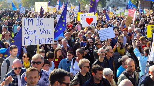 Demonstranten mit verschiedenen Schildern und vielen Europafahnen