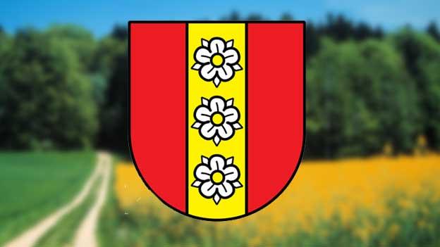 Das historische Wappen der Freiherren von Buchegg ist das neue Wappen der Gemeinde «Buchegg».