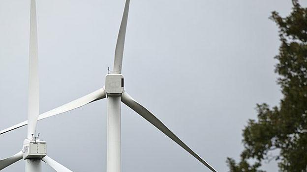 Oberhof hat wohl Windräder vorerst verhindert: In Kienberg aber - gleich daneben - könnten sie noch zu stehen kommen.