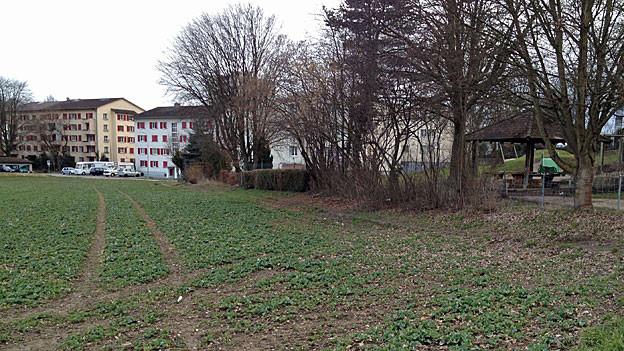 Auf diesem Areal einer Swatch-Stiftung wollte der Grenchner Baudirektor ein Kindergarten-Provisorium erstellen. Der Gemeinderat lehnte das Ansinnen vorläufig ab.