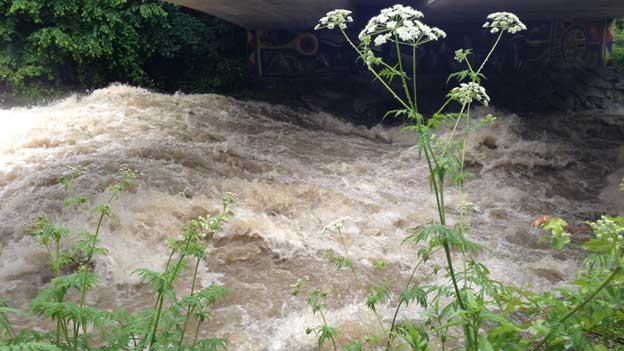 Im Verlauf des Sonntags sanken die Pegel der meisten Flüsse allmählich wieder.