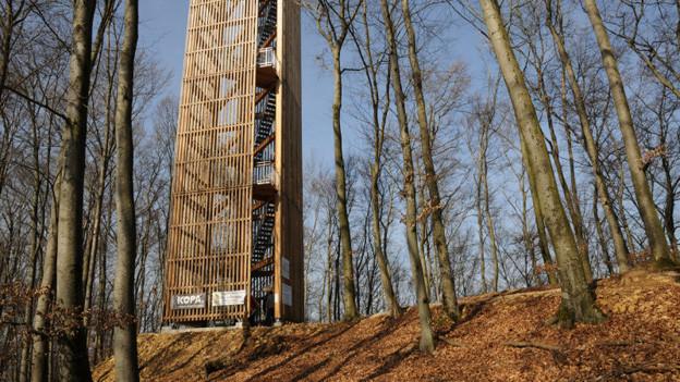 Der Chaisacherturm bei Sulz: Ganz in der Nähe verunfallte am 2. Juli ein Schüler tödlich.