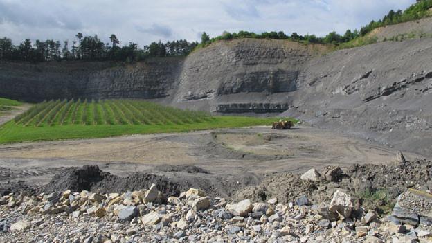 Die Grube in Wildegg gibt für die Jura Zement nicht mehr viel her. Es braucht neue Abbau-Gebiete.