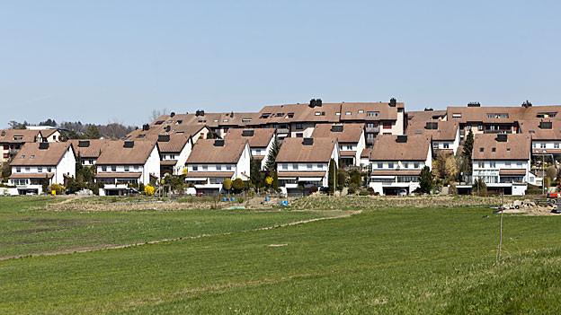 Gehören vorläufig noch zu Berikon: Einfamilienhäuser am Dorfrand
