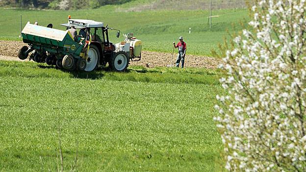 Bild in Lightbox öffnen.  Bildlegende: Nach der Arrondierung ist das Land für die Bauern einfacher zu bewirtschaften.