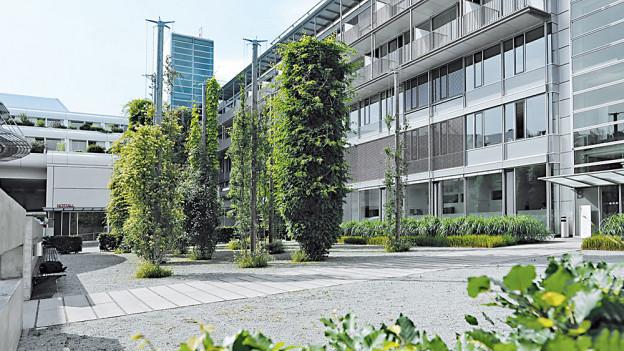 Im Notfallzentrum der Hirslanden-Klinik Aarau soll es bald mehr platz geben.