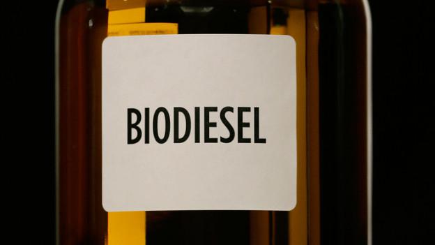 Glas mit Biodiesel drin.