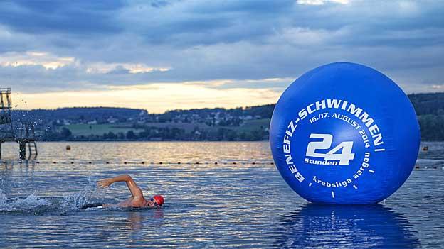 Schwimmer im Hallwilersee