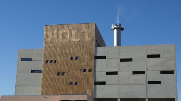 In Sisseln soll ein Holzheizkraftwerk entstehen, wie es sie im Ausland schon viele gibt.