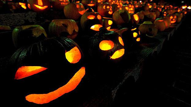 Halloween-Unfug und mehr: Aargauer und Solothurner Polizeien hattten am 31. Oktober einiges zu tun.