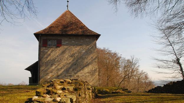 Schloss auf Wiese.