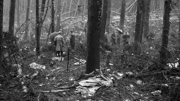 Männer begutachten die Absturzstelle mit zerstörten Bäumen und Trümmerteilen.