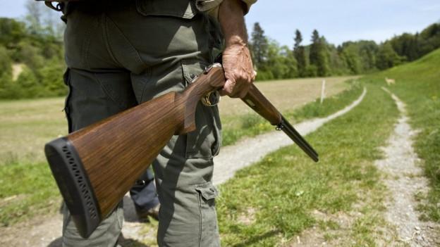 Aargauer Jäger haben im vergangenen Jahr insgesamt knapp 3000 Vögel abgeschossen.