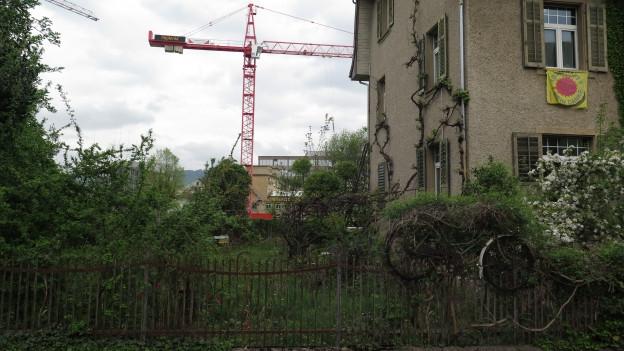 Ein älteres, verwachsenes Haus, im Hintergrund Baukran