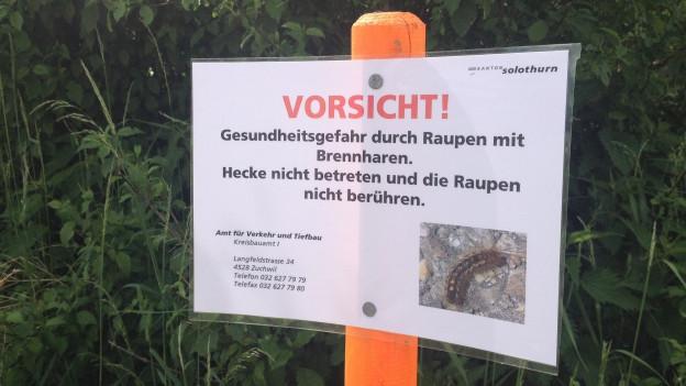 """Schild mit der Aufschrift: """"Vorsicht! Gesundheitsgefahr durch Raupen mit Brennharten. Hecke nicht betreten und die Raupen nicht berühren."""""""