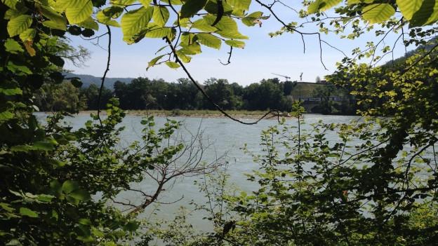Das Wasserschloss bei Gebenstorf. Blick auf die Aare, im Hintergrund rechts mündet die Reuss in die Aare. Zwischen den beiden Flüssen liegt eine Kiesinsel.