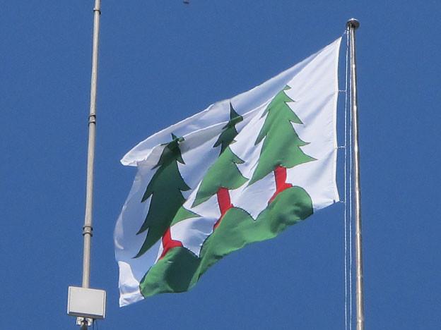 Flagge von Olten